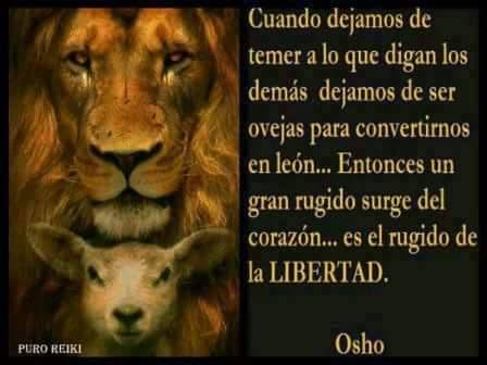osho y el león